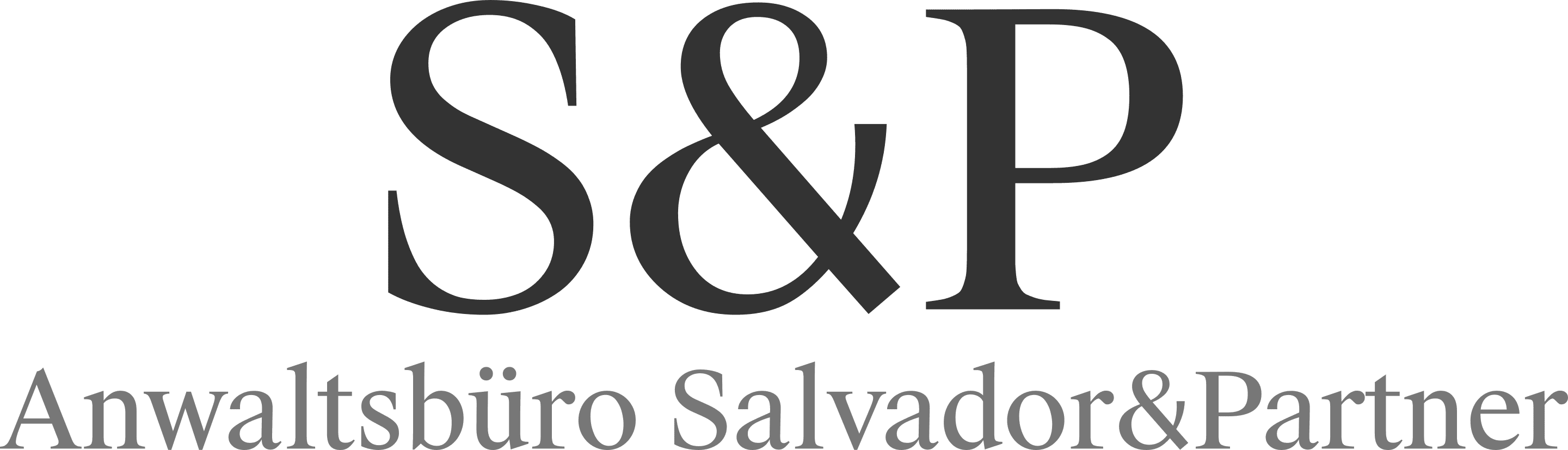 Salvador&Partner